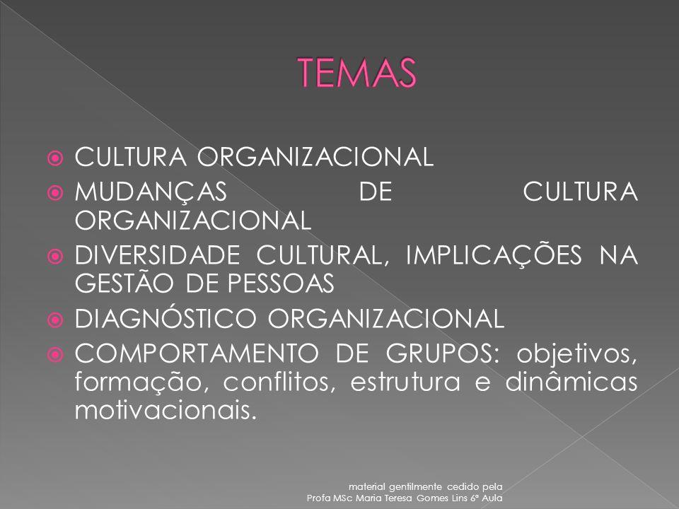 TEMAS CULTURA ORGANIZACIONAL MUDANÇAS DE CULTURA ORGANIZACIONAL