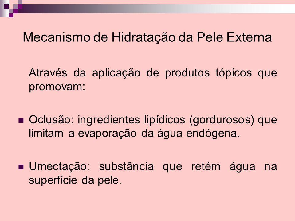 Mecanismo de Hidratação da Pele Externa