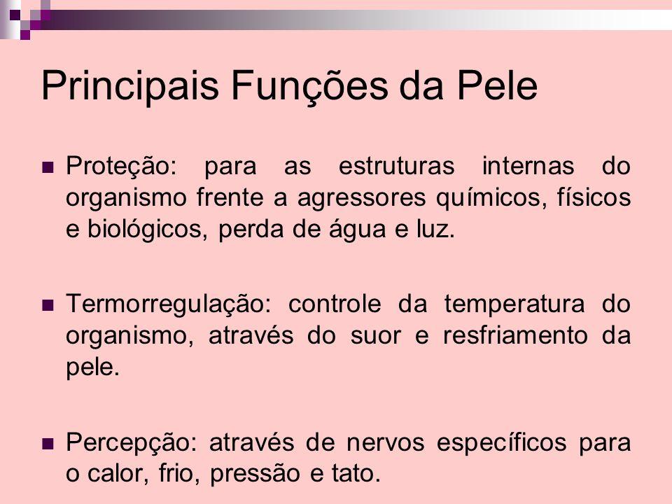 Principais Funções da Pele