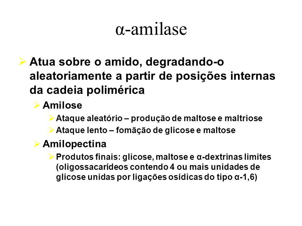 α-amilase Atua sobre o amido, degradando-o aleatoriamente a partir de posições internas da cadeia polimérica.