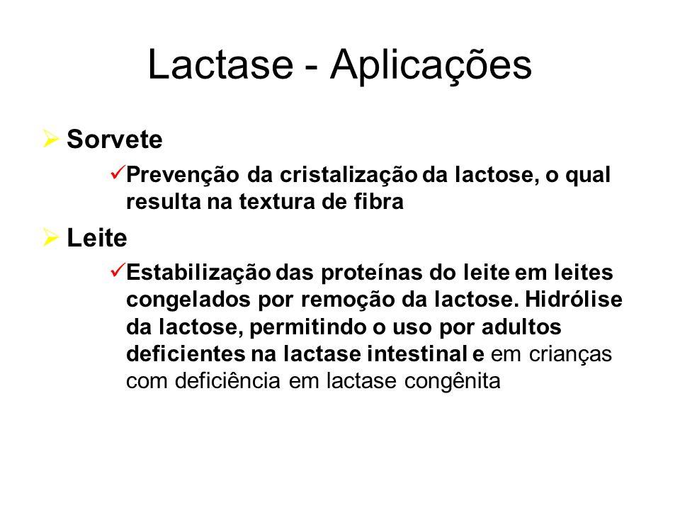 Lactase - Aplicações Sorvete Leite