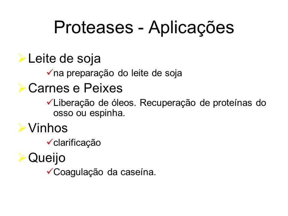 Proteases - Aplicações