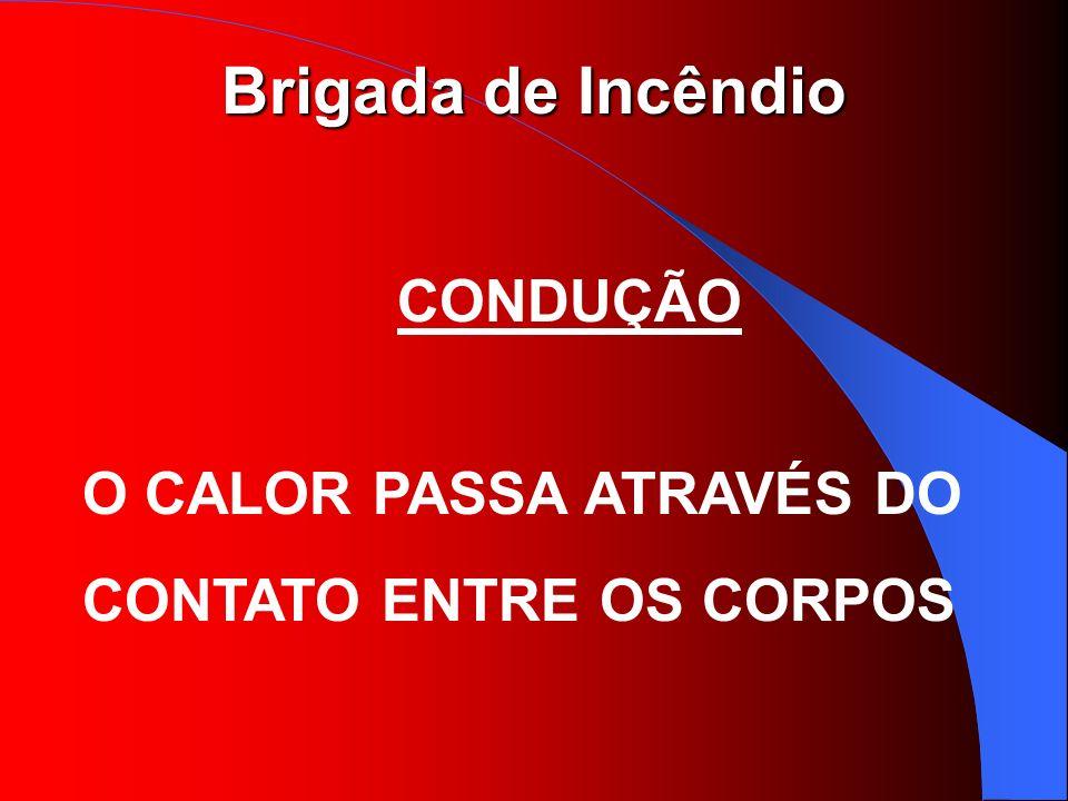 CONDUÇÃO O CALOR PASSA ATRAVÉS DO CONTATO ENTRE OS CORPOS