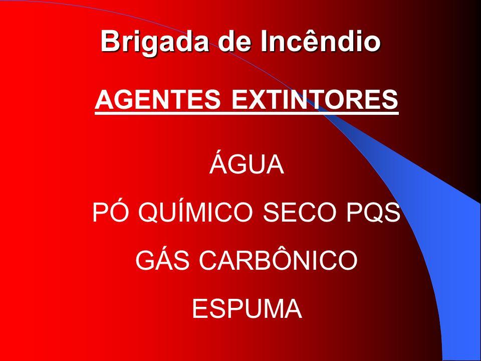 AGENTES EXTINTORES ÁGUA PÓ QUÍMICO SECO PQS GÁS CARBÔNICO ESPUMA