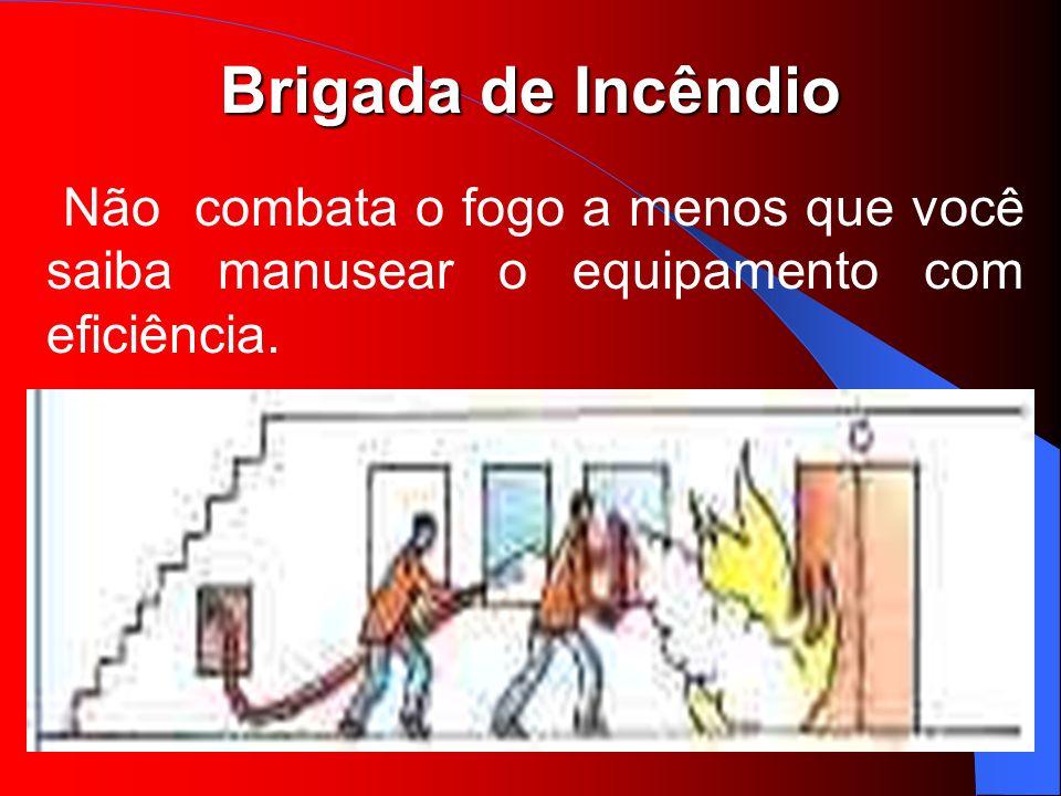 Não combata o fogo a menos que você saiba manusear o equipamento com eficiência.