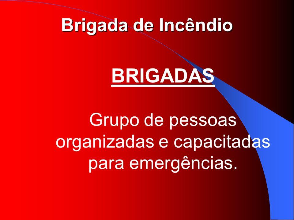 BRIGADAS Grupo de pessoas organizadas e capacitadas para emergências.