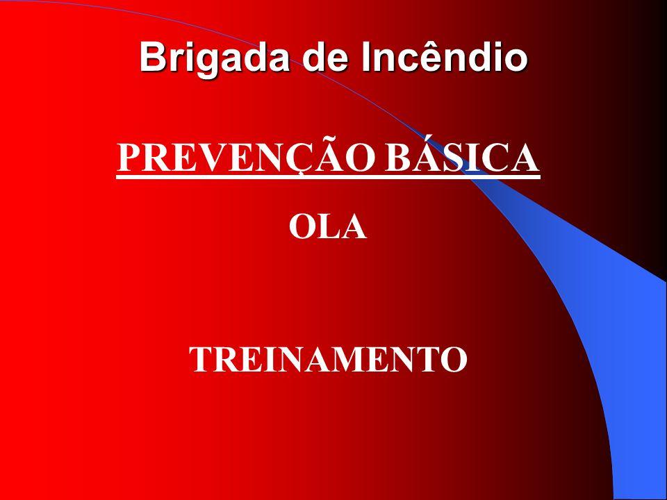 PREVENÇÃO BÁSICA OLA TREINAMENTO