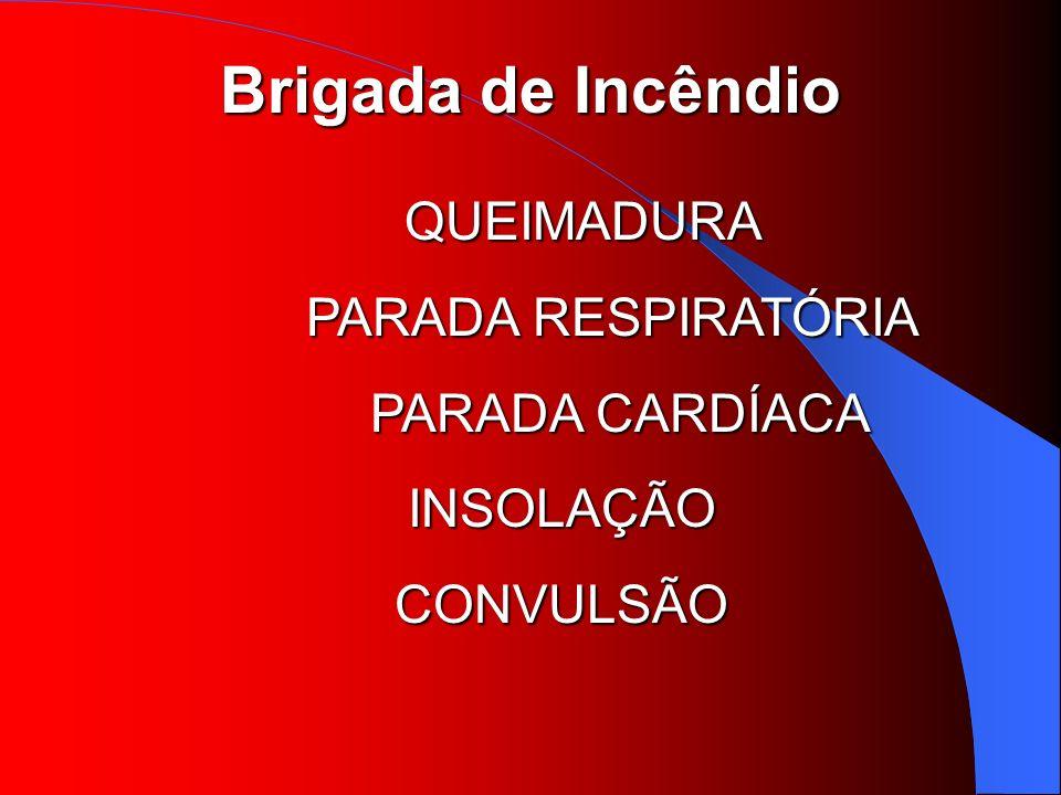 QUEIMADURA PARADA RESPIRATÓRIA PARADA CARDÍACA INSOLAÇÃO CONVULSÃO