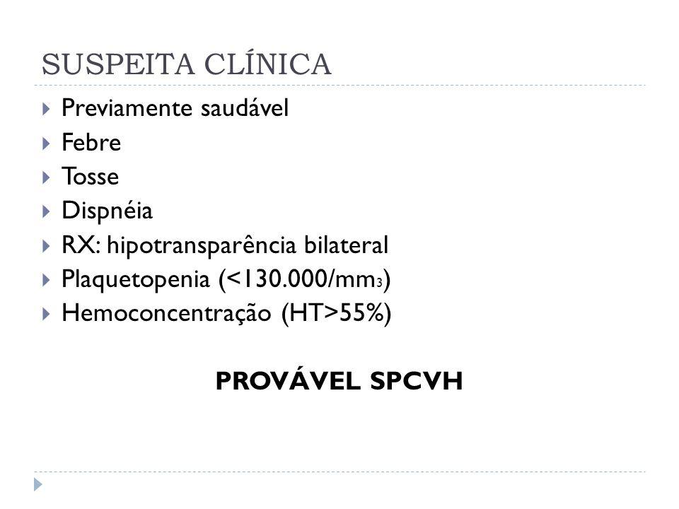 SUSPEITA CLÍNICA Previamente saudável Febre Tosse Dispnéia