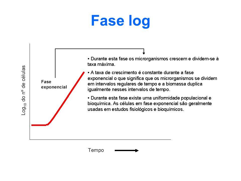 Fase log