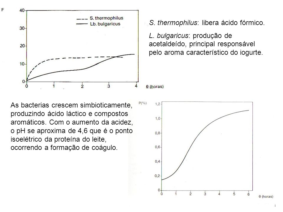 S. thermophilus: libera ácido fórmico.