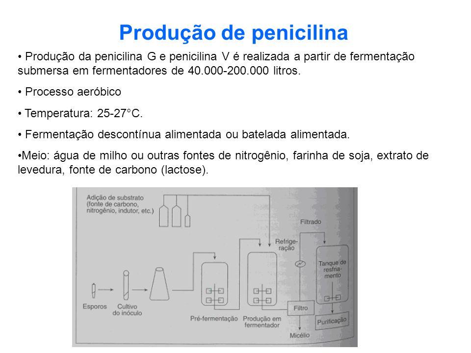 Produção de penicilina