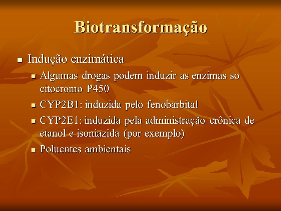 Biotransformação Indução enzimática