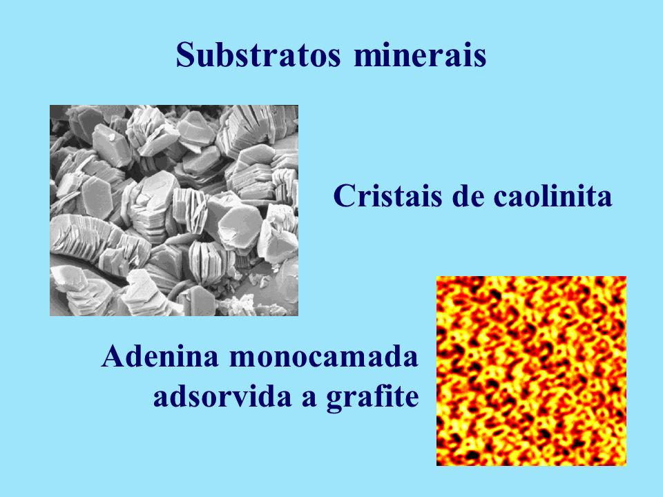 Substratos minerais Cristais de caolinita
