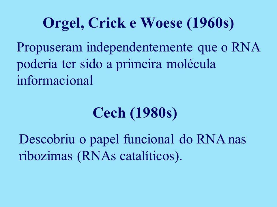 Orgel, Crick e Woese (1960s) Cech (1980s)