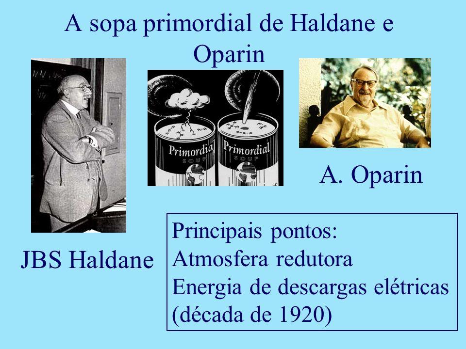 A sopa primordial de Haldane e Oparin