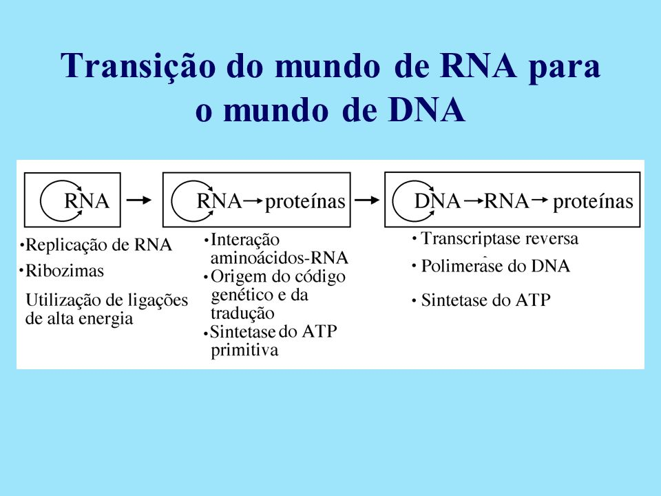 Transição do mundo de RNA para o mundo de DNA