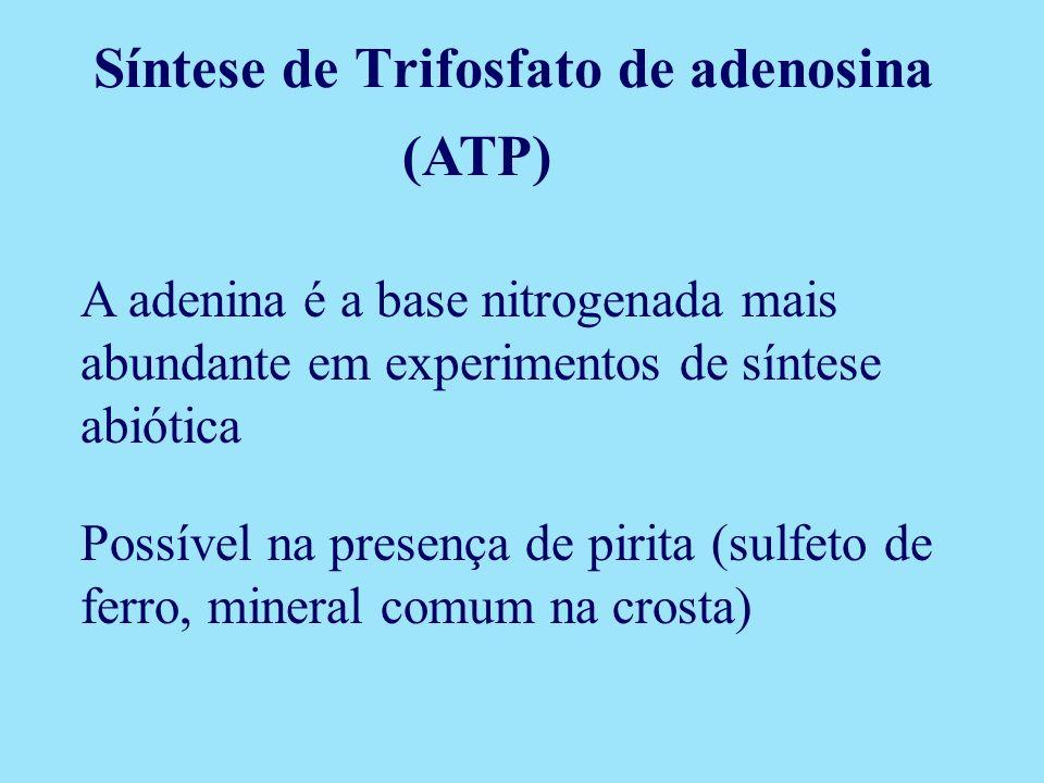 Síntese de Trifosfato de adenosina