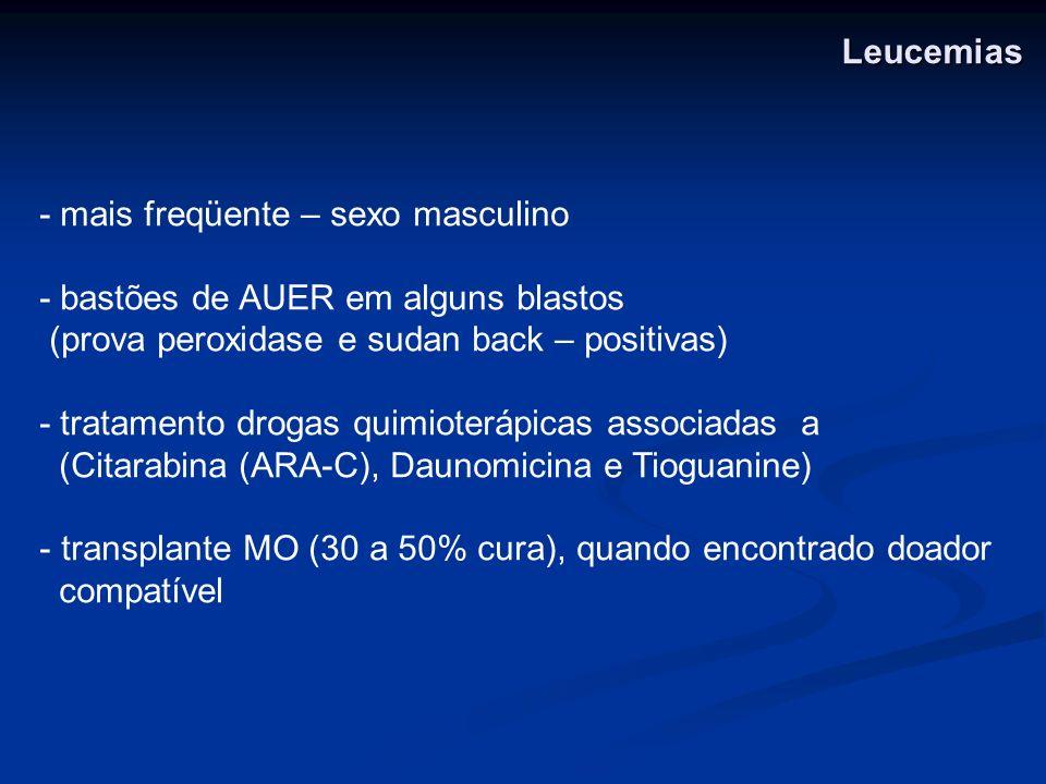 Leucemias - mais freqüente – sexo masculino. - bastões de AUER em alguns blastos. (prova peroxidase e sudan back – positivas)