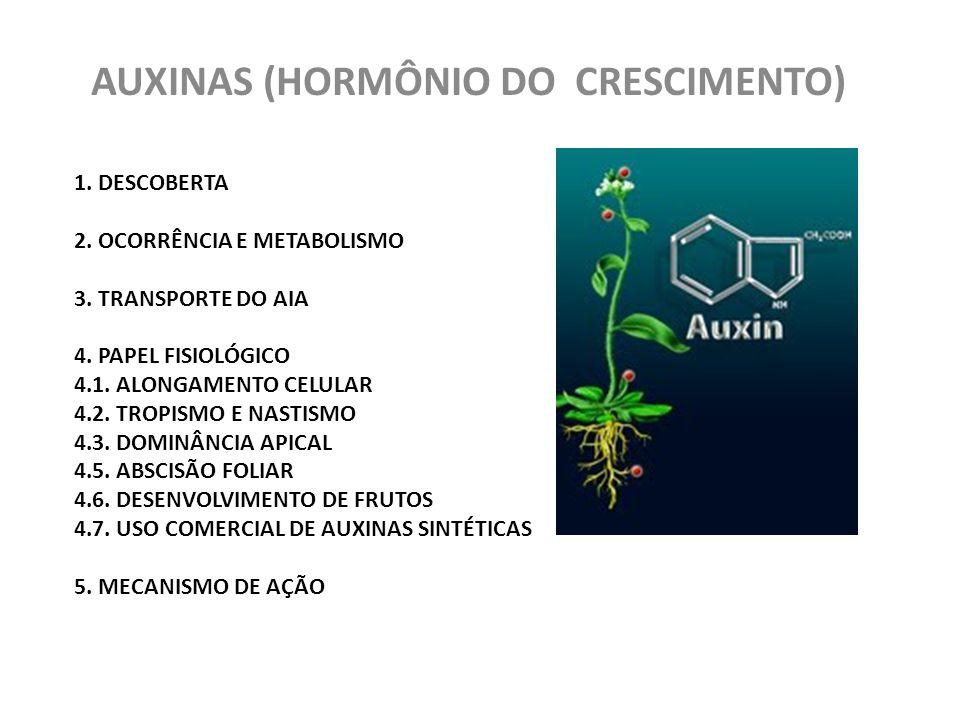 AUXINAS (HORMÔNIO DO CRESCIMENTO)