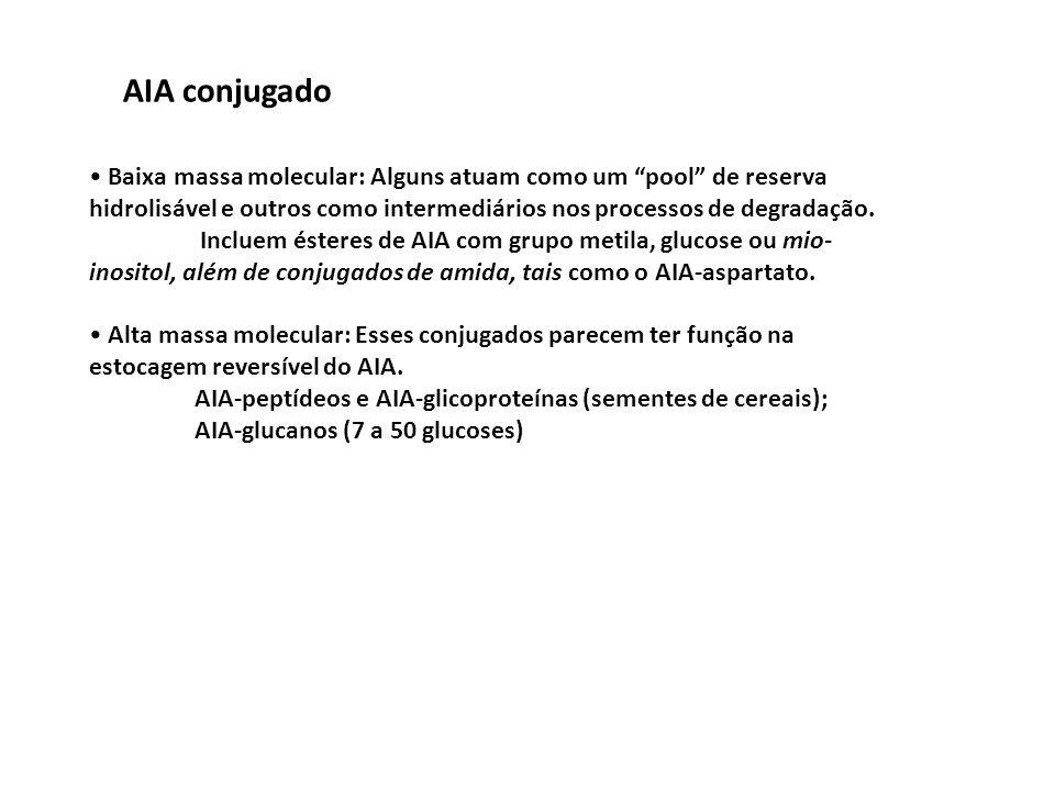 AIA conjugado • Baixa massa molecular: Alguns atuam como um pool de reserva hidrolisável e outros como intermediários nos processos de degradação.