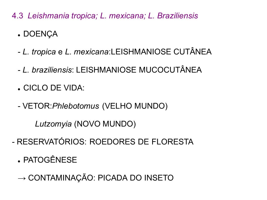 4.3 Leishmania tropica; L. mexicana; L. Braziliensis