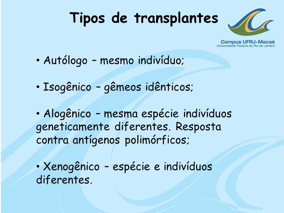 Tipos de transplantes Autólogo – mesmo indivíduo;