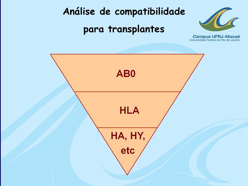 Análise de compatibilidade