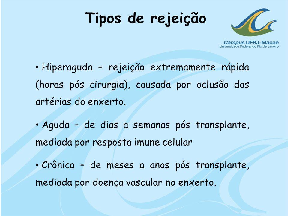 Tipos de rejeição Hiperaguda – rejeição extremamente rápida (horas pós cirurgia), causada por oclusão das artérias do enxerto.