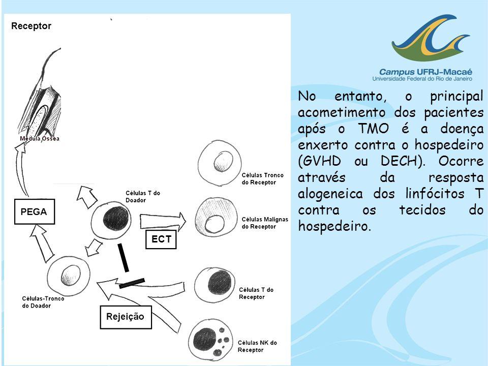 No entanto, o principal acometimento dos pacientes após o TMO é a doença enxerto contra o hospedeiro (GVHD ou DECH). Ocorre através da resposta alogeneica dos linfócitos T contra os tecidos do hospedeiro.