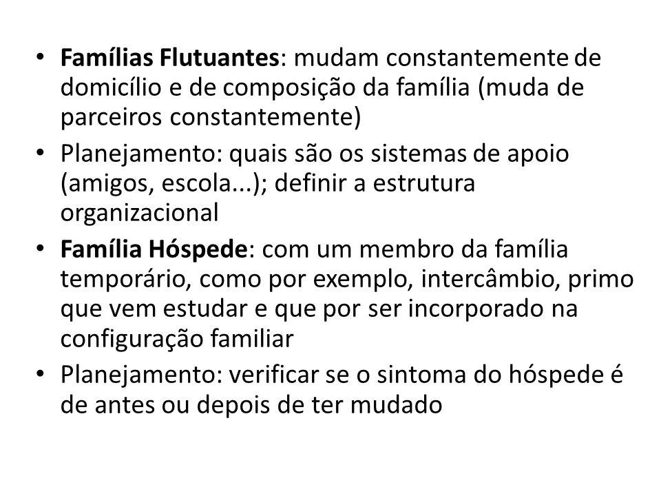 Famílias Flutuantes: mudam constantemente de domicílio e de composição da família (muda de parceiros constantemente)