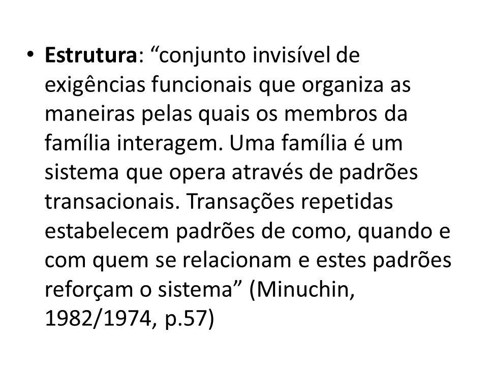 Estrutura: conjunto invisível de exigências funcionais que organiza as maneiras pelas quais os membros da família interagem.