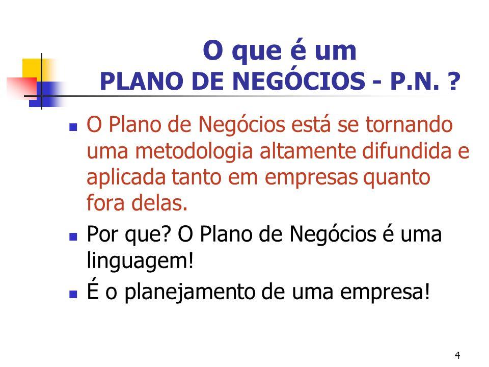 O que é um PLANO DE NEGÓCIOS - P.N.