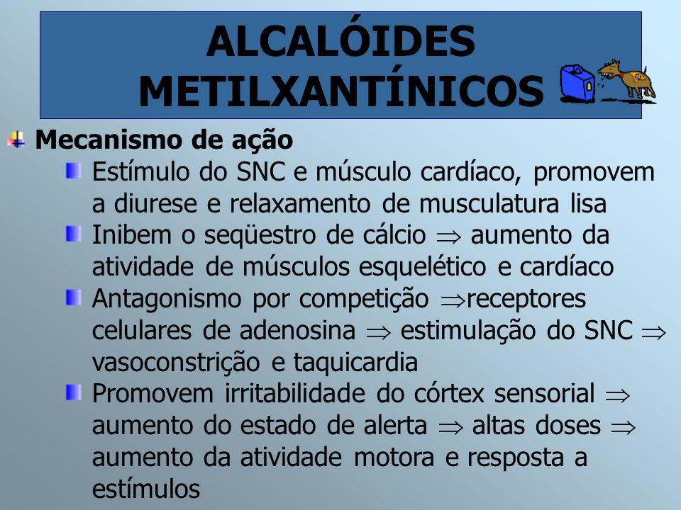 ALCALÓIDES METILXANTÍNICOS
