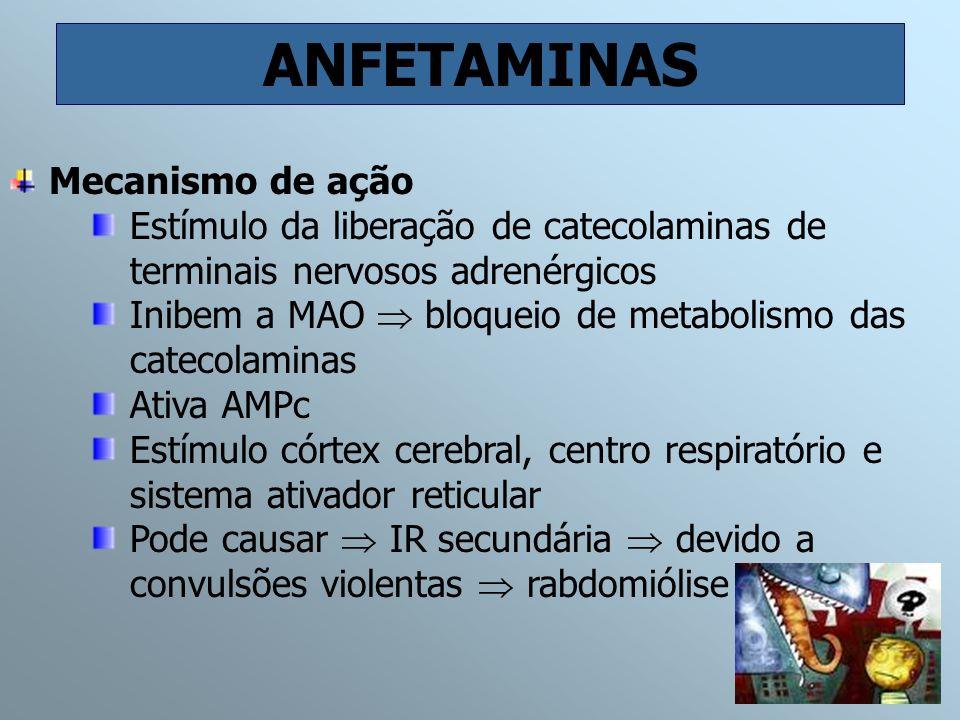 ANFETAMINAS Mecanismo de ação