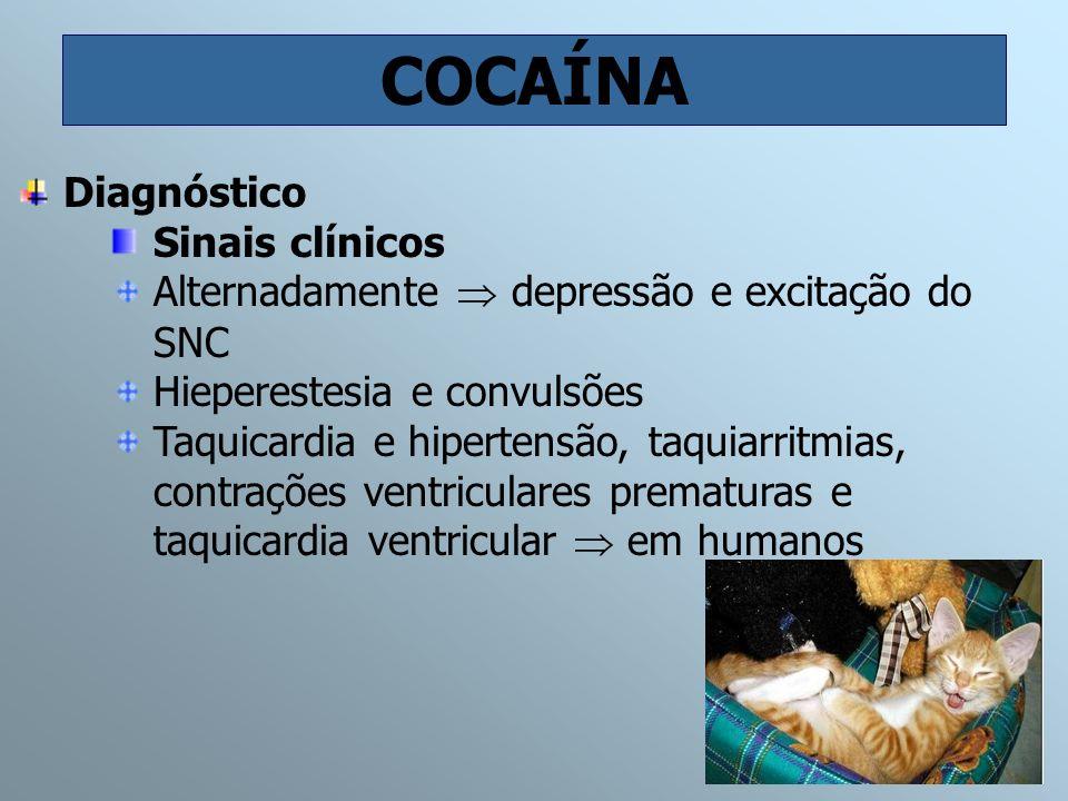 COCAÍNA Diagnóstico Sinais clínicos