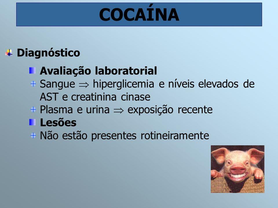 COCAÍNA Diagnóstico Avaliação laboratorial