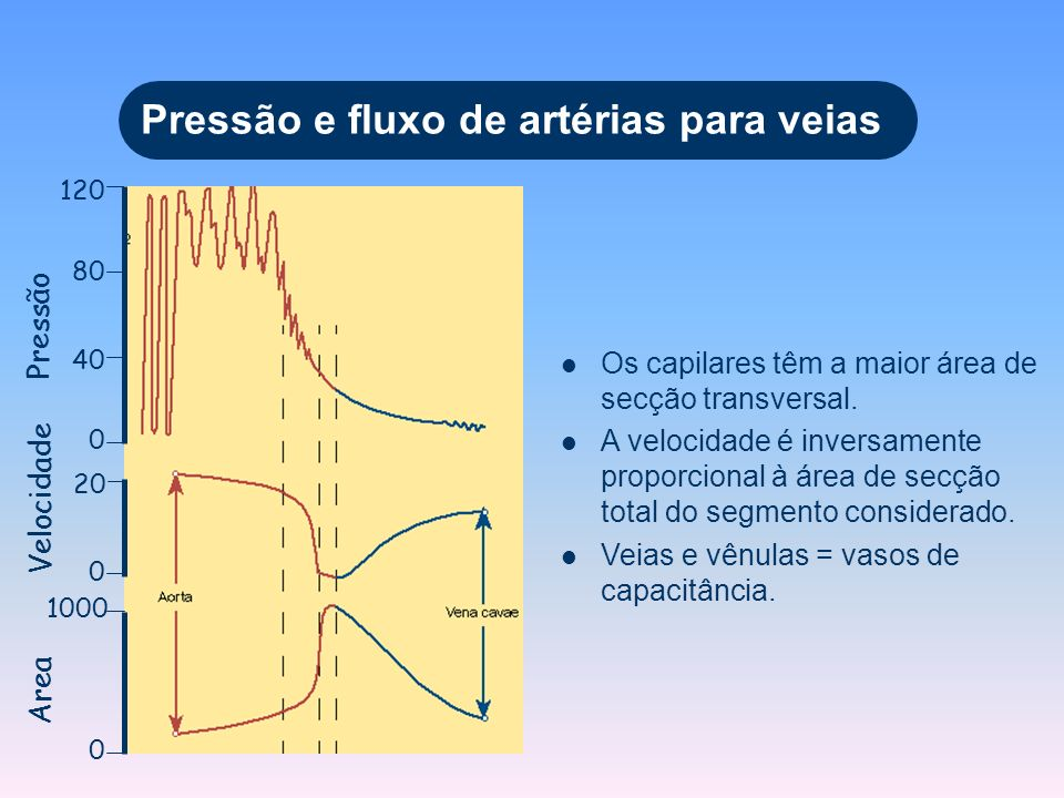Pressão e fluxo de artérias para veias