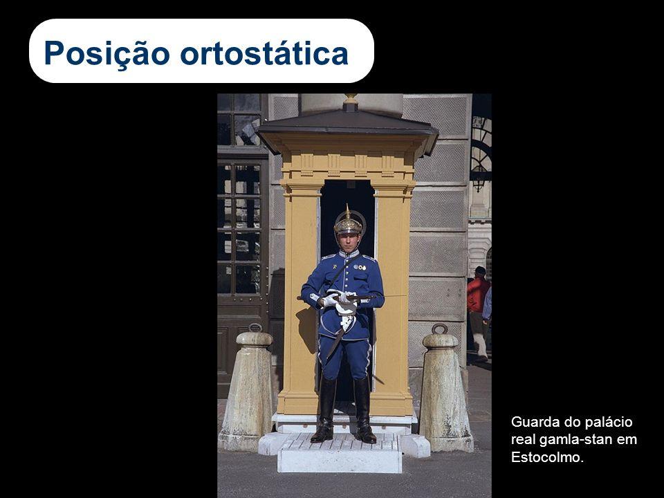 Posição ortostática Guarda do palácio real gamla-stan em Estocolmo.