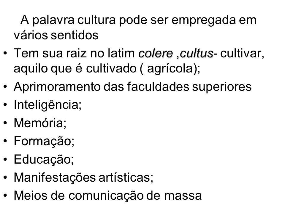 A palavra cultura pode ser empregada em vários sentidos