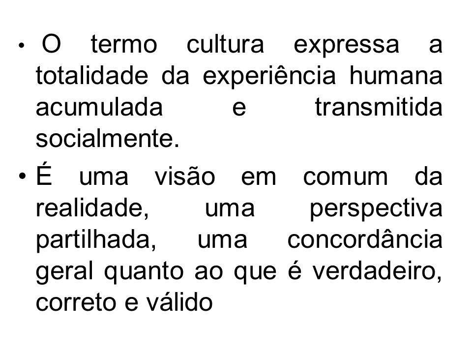 O termo cultura expressa a totalidade da experiência humana acumulada e transmitida socialmente.