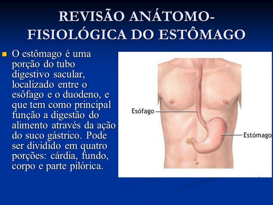 REVISÃO ANÁTOMO-FISIOLÓGICA DO ESTÔMAGO