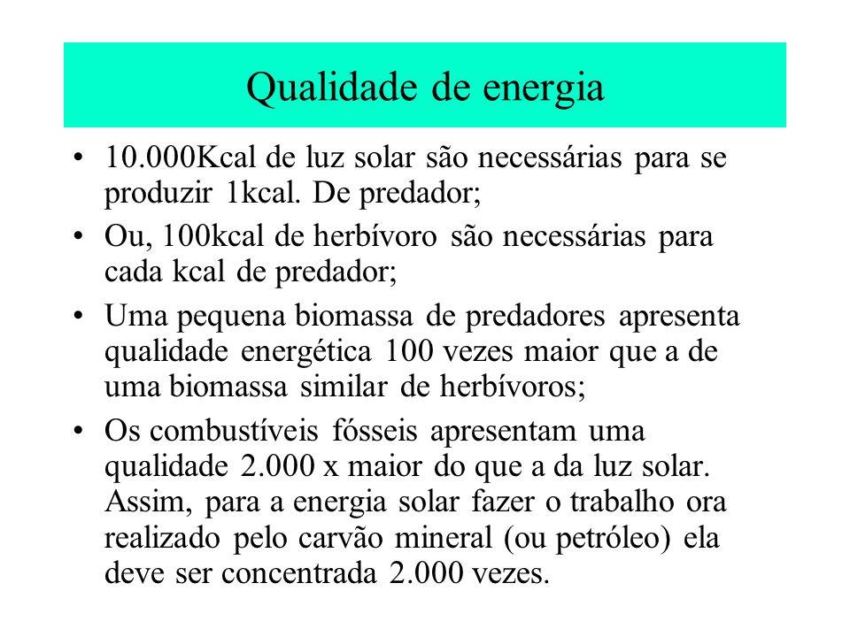 Qualidade de energia 10.000Kcal de luz solar são necessárias para se produzir 1kcal. De predador;
