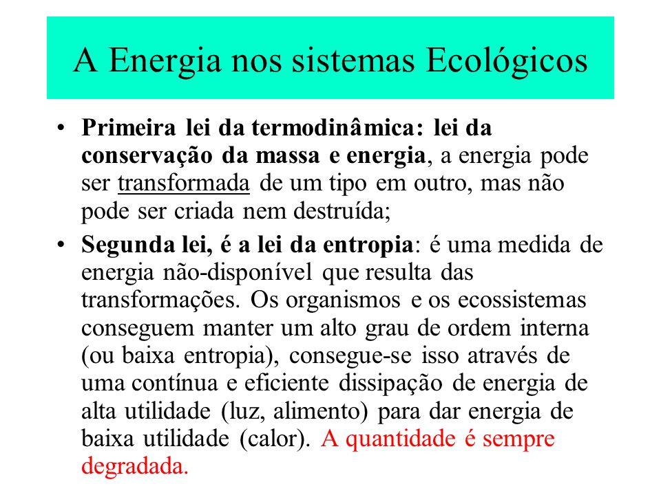 A Energia nos sistemas Ecológicos