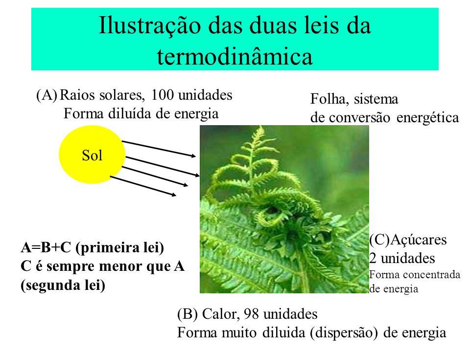Ilustração das duas leis da termodinâmica