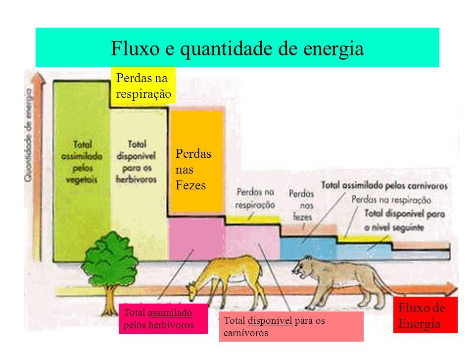 Fluxo e quantidade de energia