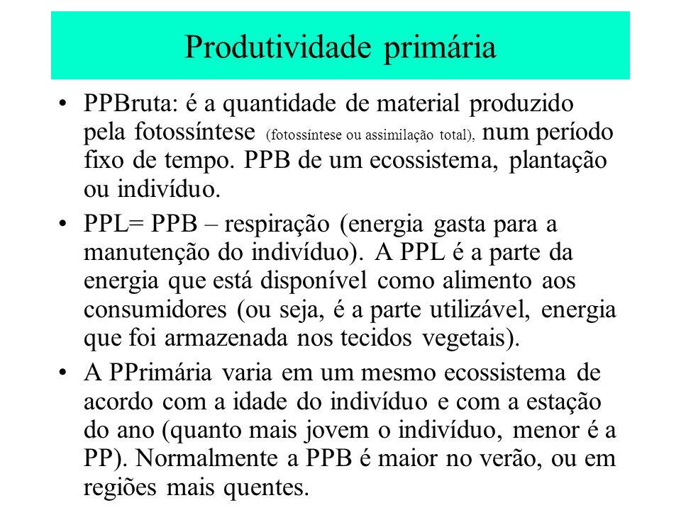Produtividade primária