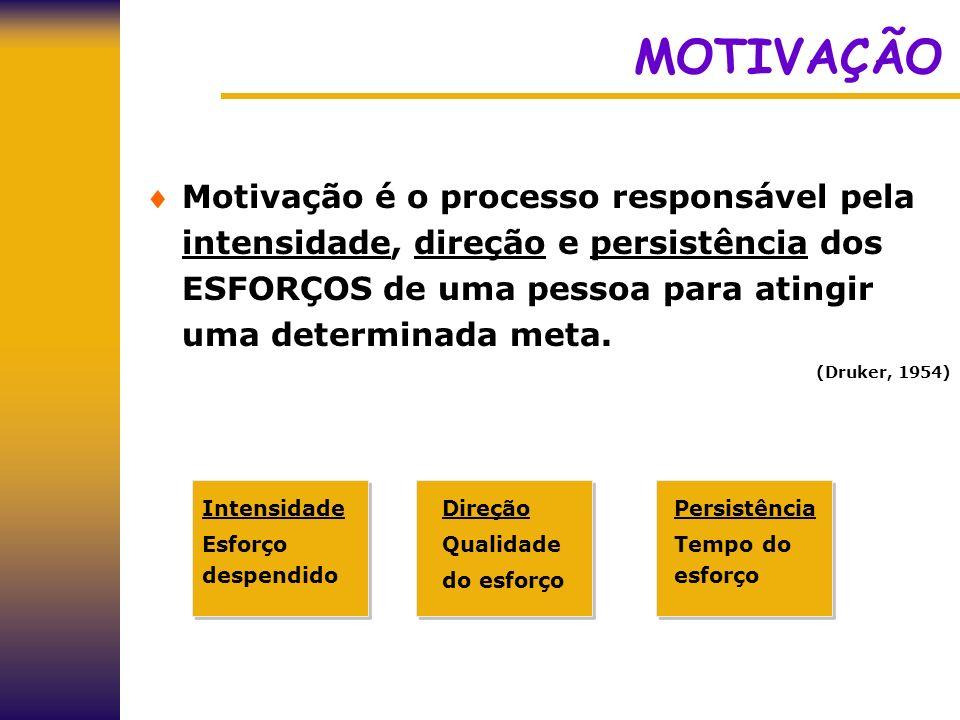 MOTIVAÇÃO Motivação é o processo responsável pela intensidade, direção e persistência dos ESFORÇOS de uma pessoa para atingir uma determinada meta.