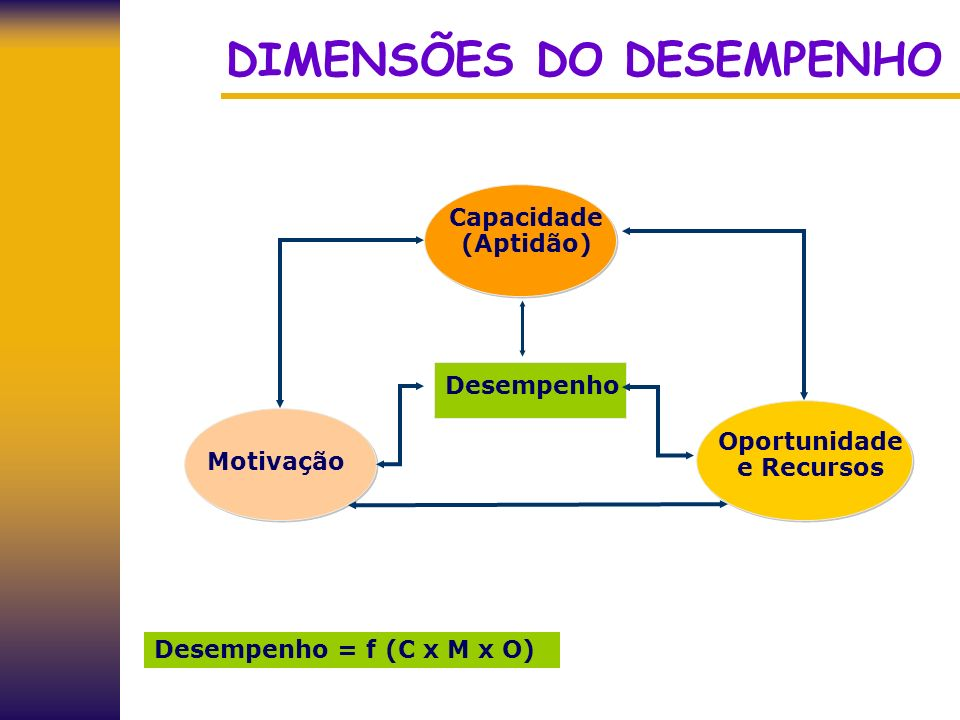 DIMENSÕES DO DESEMPENHO