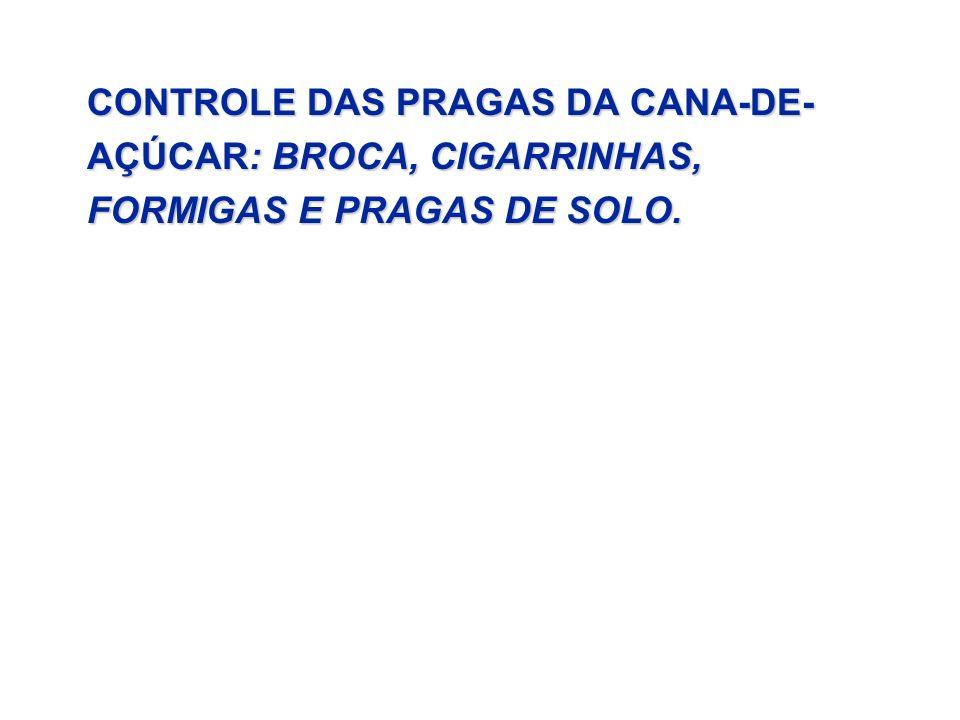 CONTROLE DAS PRAGAS DA CANA-DE-AÇÚCAR: BROCA, CIGARRINHAS, FORMIGAS E PRAGAS DE SOLO.